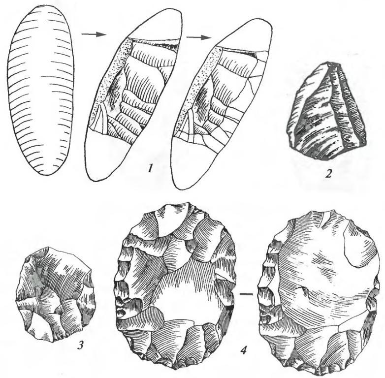 Техника леваллуа: 1 — этапы изготовления леваллуазского нуклеуса; 2, 3 — леваллуазские отщепы; 4— леваллуазский нуклеус