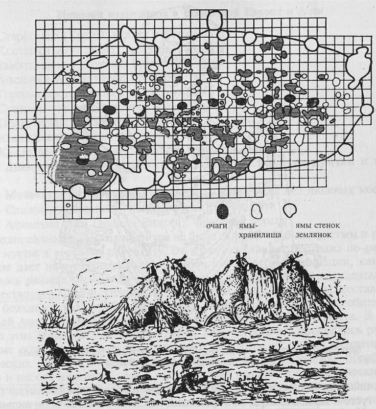 Палеолитическое жилище в Костенках: план и реконструкция