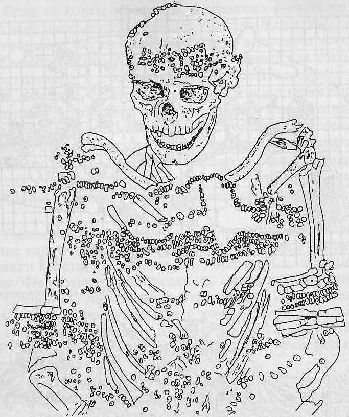 Верхнепалеолитическое захоронение Сунгирь. Бусины и подвески украшали одежду погребенного (по О.Н. Бадер)