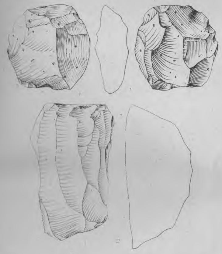 Рис. 2. Нуклеусы местонахождения Сапун. 1 — леваллуазский; 1 — одноплощадочный однофронтальный.