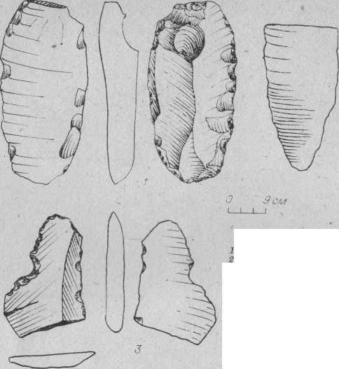 Рис. 3. Орудия стоянки Сапун. 1 — концевой скребок с краевой ретушью; 2 — наконечник; 3 — зубчато-выемчатое орудие.