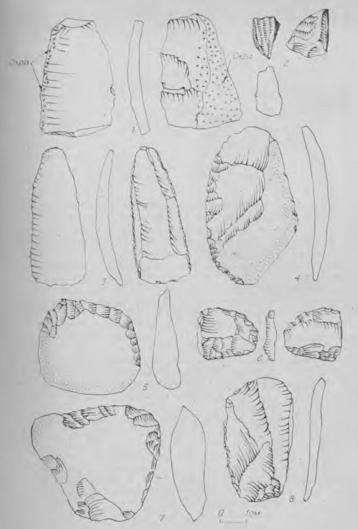 Рис. 6. Каменные орудия из нюкжинского жертвенника.