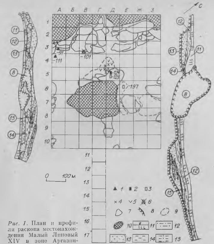 Рис. 1. План и профили раскопа местонахождения Малый Липовый XIV в зоне Аргазинского водохранилища. 1 — каменные изделия; 2 — ножевидная пластинка с эпизодической ретушью; 3 — ножевидные пластинки; 4 — обломки костей; 5 — угольки; 6 — развал сосуда; 7 — валуны, глыбы; 8 — скала; 9 — граница распространения красной липкой глины; 10 — монолит скалы; 11 — гумусировакная почва; 12 — светло-коричневая супесь; 13 — мелкозернистый песок; 14 — красная липкая глина; 15 — песок с прожилками и линзами глины.