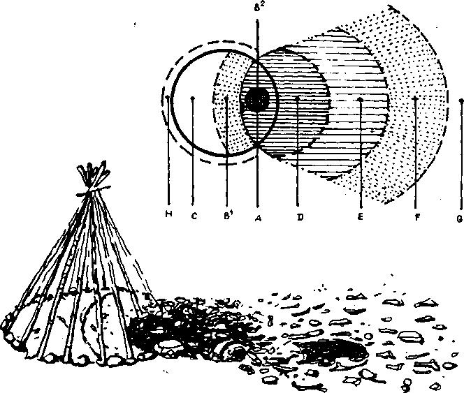 Рис. 92. Модель легкого наземного позднепалеолитического жилища (по А. Леруа-Гурану).