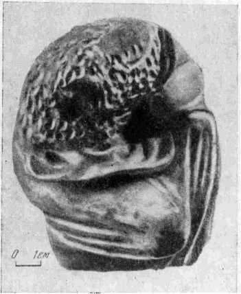 Рис. 6. Статуэтка из Феодосии, изобра¬жавшая девушку, переделанная коропластом в Силена