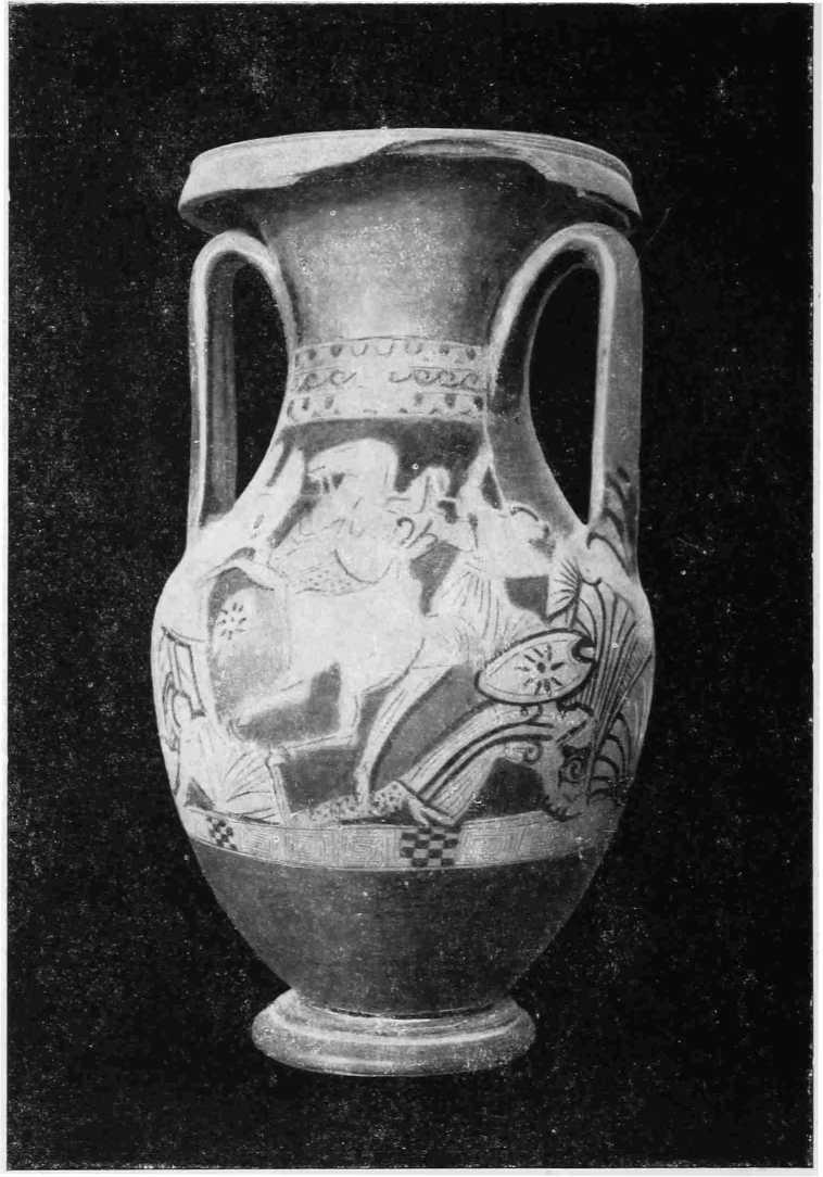 Рис. 35. Краснофигурная пелика Ялтинского музея (инв. № 2572). Оборотная сторона (В)