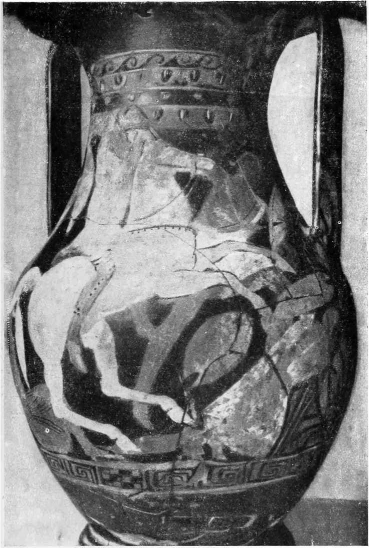 Рис. 36. Пелика Одесского музея (инв. ш/3808). Лицевая сторона (А)