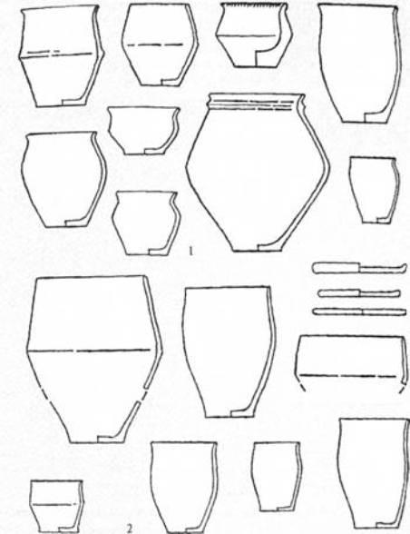 Рис. 21. Кераміка пеньківської (1) і коломийської (2) культур