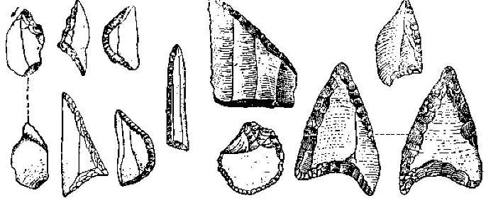Рис. 3. Микролиты геометрических форм (2—5) и мелкие резцы (1) из Франконии. Но Гумнерту (1/1)