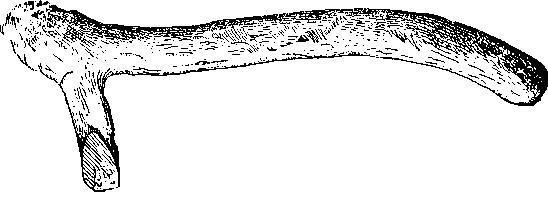 Рис. 5. Топор типа Лингби из рога северного оленя (Гольштейн) (1/4).