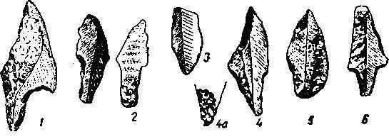Рис. 1. Кремневые орудия свидерских типов, Нолыпа. По Козловскому (4/3)
