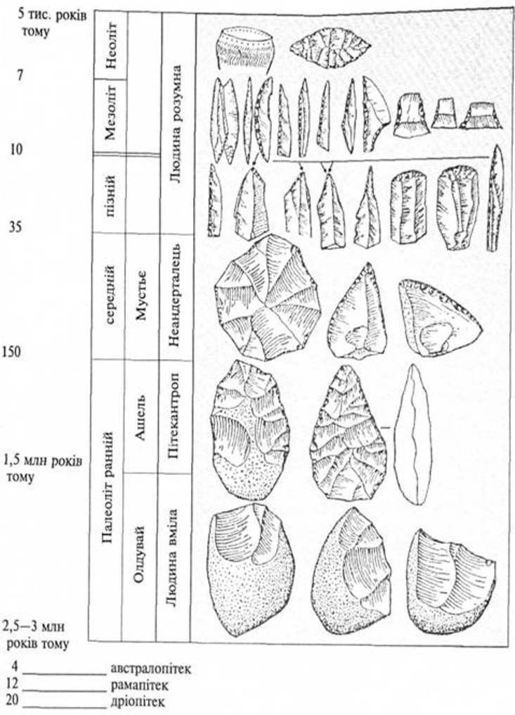 Рис. 6. Періодизація кам'яної доби