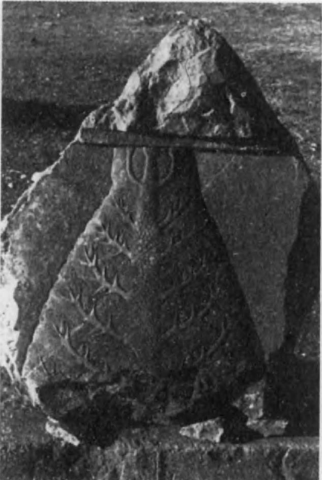 29.Изображение дерева на рельефе из Персеполя.