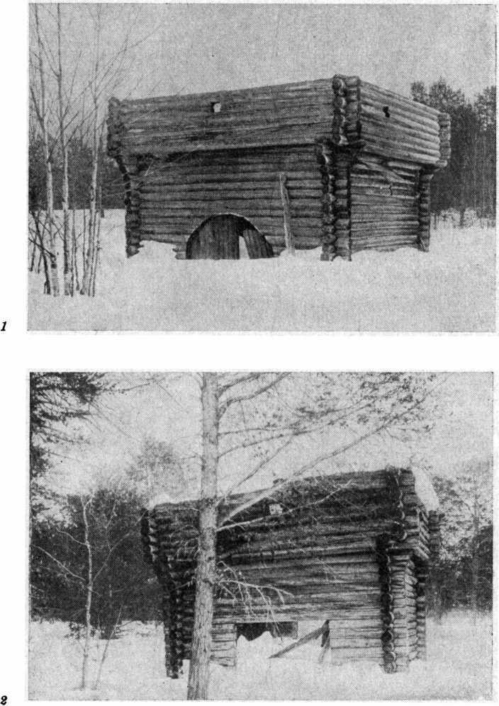 Рис. 17. Казымские башни (фото И. Шухова). 1 — верх; 2 — низ