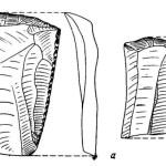 Рис. 19. Петрушинская стоянка. Кремневые скребки