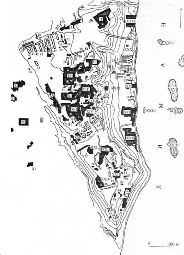 Рис. 3. План Ольвії з позначенням розкопаних ділянок (за С.Д. Крижицьким)