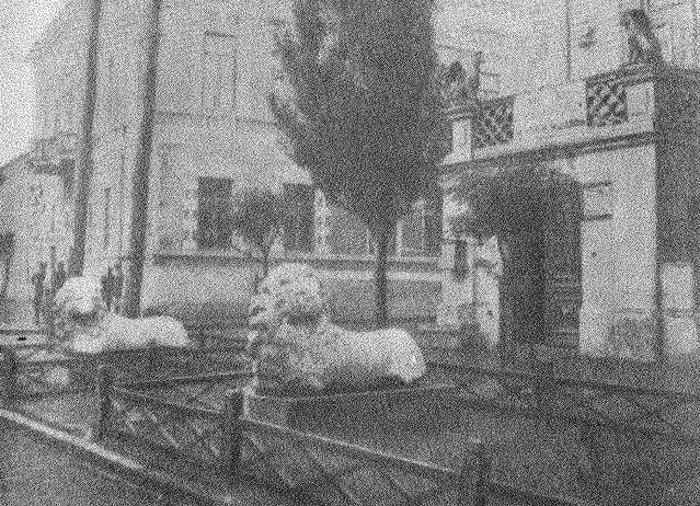 Рис. 5. Мраморные статуи львов, поднятые со дна моря около Фанагории