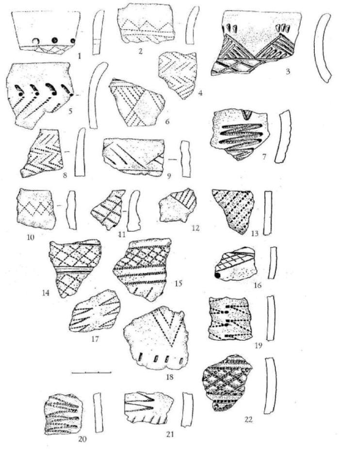Рис. 9. Керамика поселения Речкуново IV