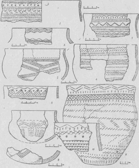 Рис. 2. Керамика из жилища. 1, 2, 4, 6, 9, 10 — первая группа; 3, 5, 7, 8 — вторая группа