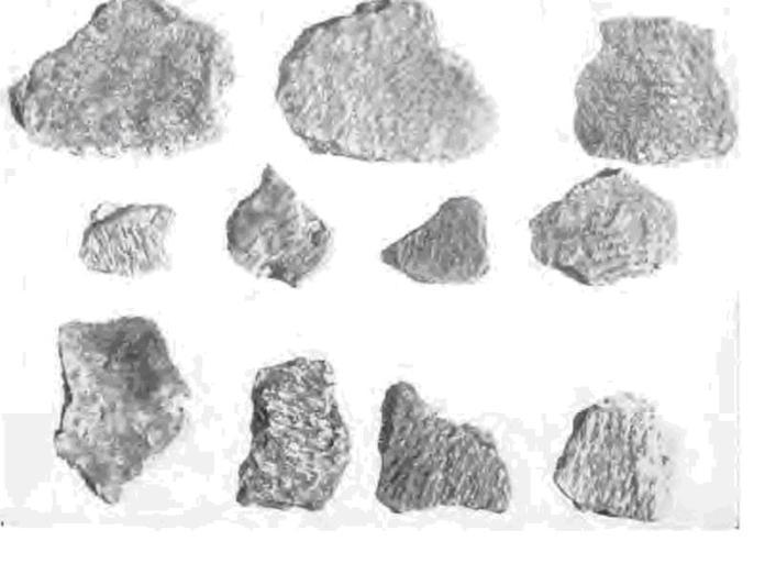 Рис. 4. Дьяковская керамика, найденная на территории Кремля