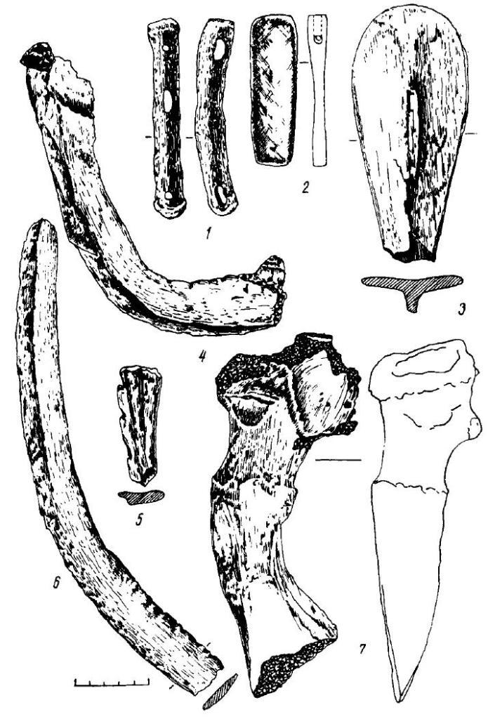 Рис. 16. Поселение Большой Лог. Изделия из кости, рога (1, 3—7} и камня (2)