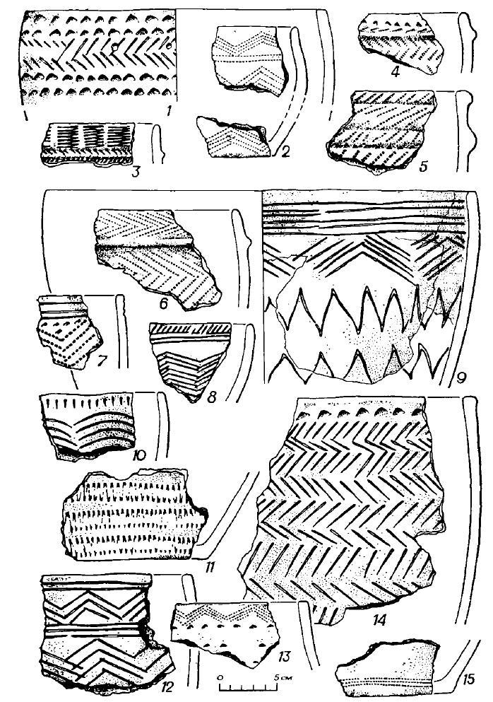 Рис. 5. Керамика поселения Черноозерье I (1—15 — городище)