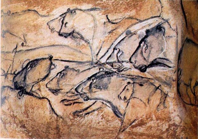Львы из пещеры Шавье ( по Д.Клот)