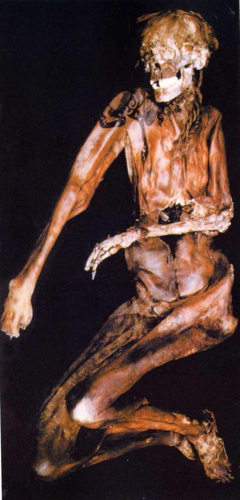Мумия мужчины, могильник Верх- Кальджин 2, пазырыкская культура,Горный Алтай, раск. В.И. Молодина (по Н.В. Полосьмак )