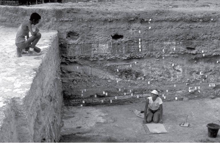 Рис. 9.10. Общий вид главного разреза в Куэлло, стратифицированном памятнике майя в Белизе. Бирками маркированы идентифицированные слои