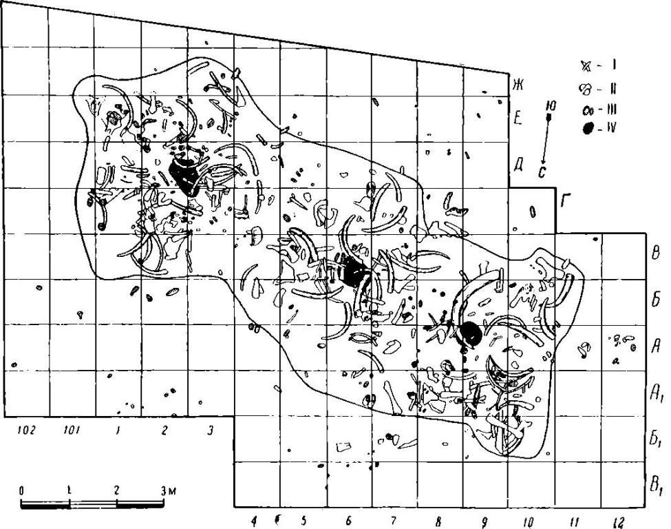 Рис. 22. План жилища палеолитической стоянки Пушкари I. I - бивни мамонтов; II - кости мамонтов; III - зубы мамонтов; IV - очажные центры.
