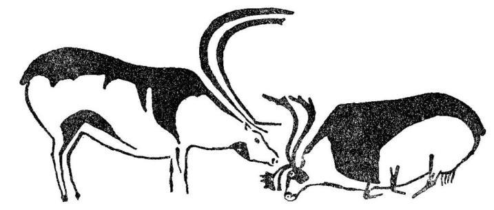 Два оленя. Мадленская полихромная живопись из пещеры Фон де Гом, Франция