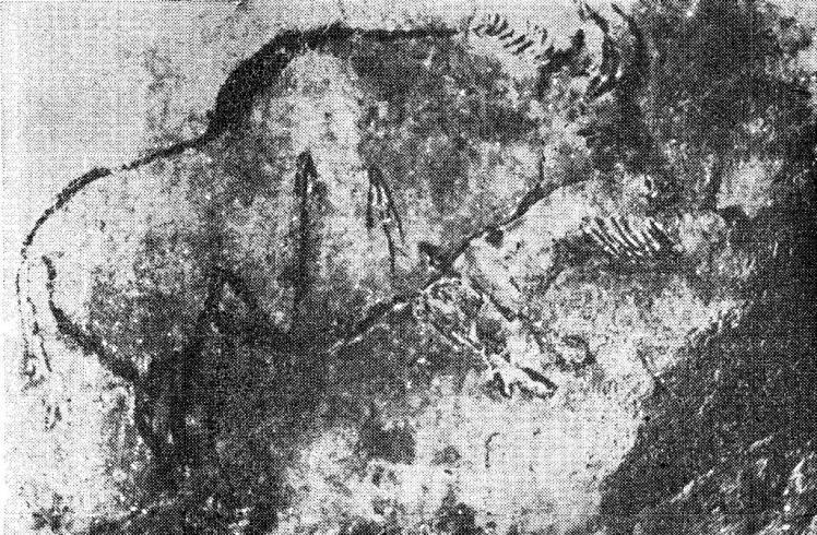 Изображение бизона, раненного стрелами. Мадленская живопись из пещеры Нио, Франция