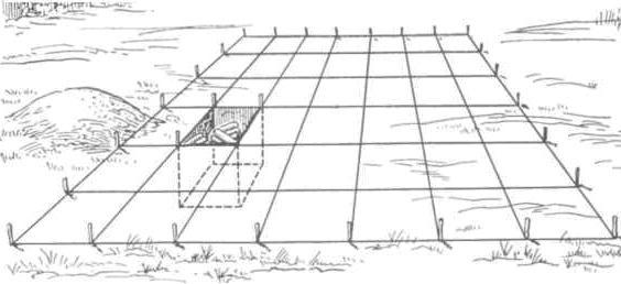 Рис. 53. Расширение шурфа и превращение его в раскоп. Шурф вписан в сетку разбитого раскопа