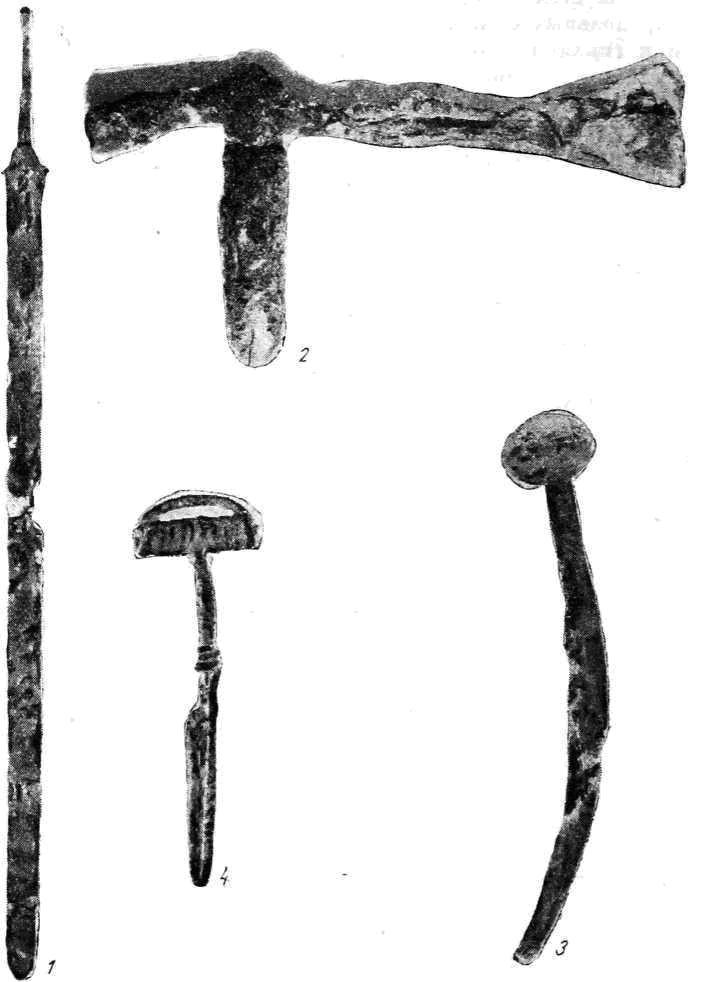Рис. 10. Неаполь Скифский. Находки из погребений мавзолея 1 — железный меч; 2 — железная секира; 3 — железное навершие (?); 4 — бронзовая фибула