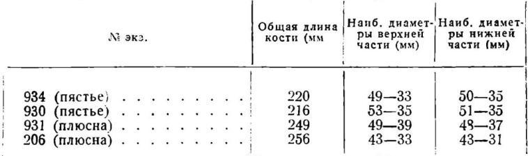 Таблица 4. Измерения пястных и плюсневых костей лошади из Старой Рязани