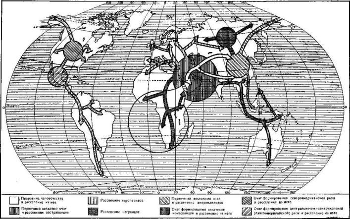 Прародина человечества и очаги расообразования. Карта составлена В. П. Алексеевым