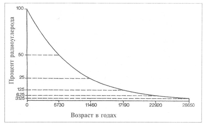 Рис. 8. Кривая распада радиоактивного углерода.