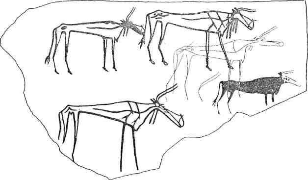 Рис. 105. Изображения быков на плите из Разлива X [Пшеницына и др., 1975]