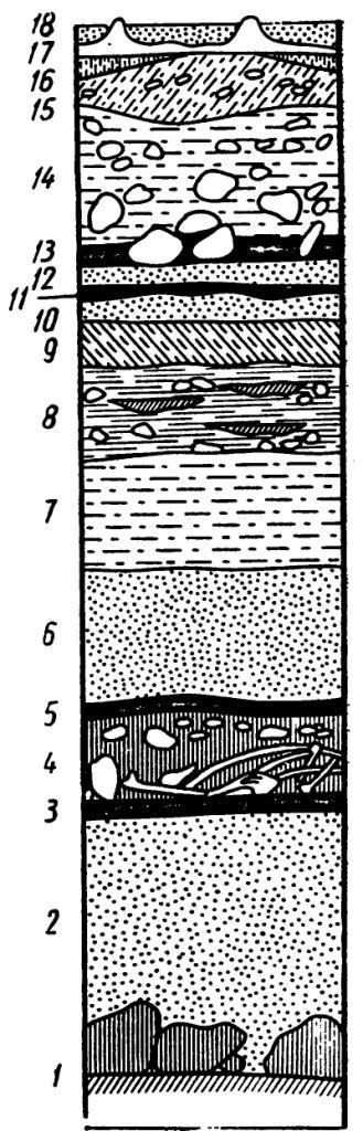 Рис. 6. Стратиграфическая колонка пещерных отложений: 1 - материк: 2 — слой с редкими находками мустьерских изделий: 3, 5, 11, 13 — стерильные прослойки:4 — следы обитания пещерных медведей:6—9 — культурные горизонты разных периодов: 10, 12 неолит; 14 — глина с камнями (стерильная прослойка):15 — слой раннего железного века: 16—18 современные слой