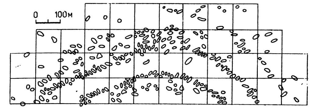 Рис. 8. План расположения «площадок» в западной частя Майданецкого поселения (по Дудкину)