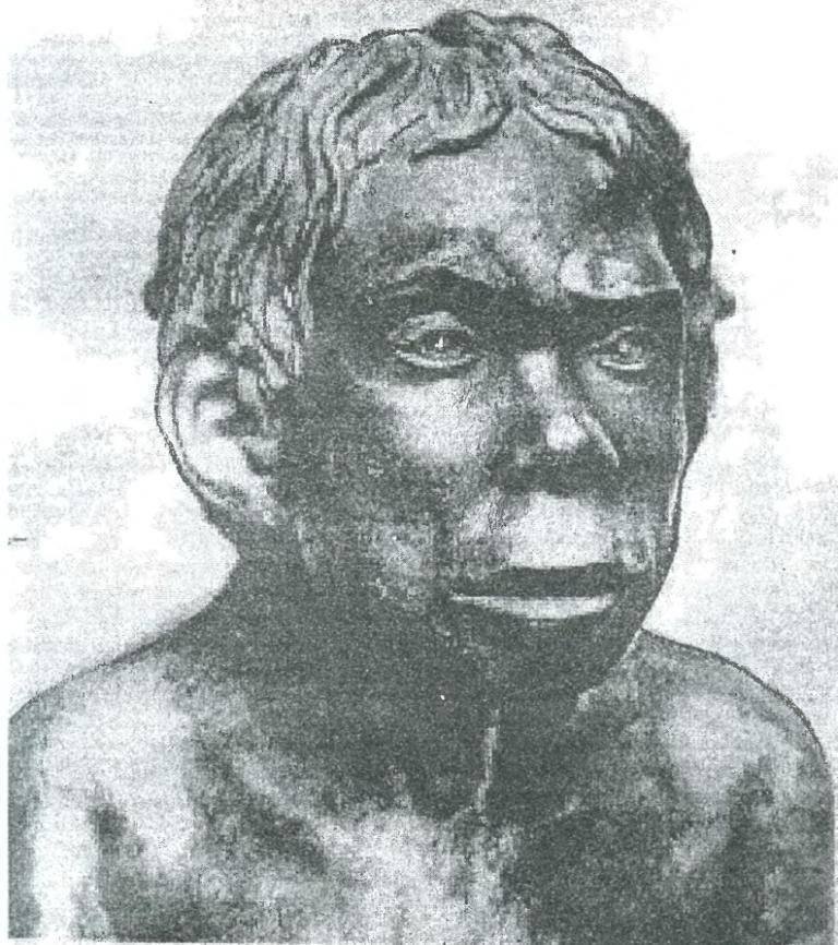 Графическая реконструкция по черепу неандертальца. Работа М.М. Герасимоза. Такого облика были обитатели Сибири раннего палеолита.