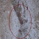 Красные числа в Римском Колизее