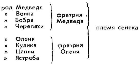 rodo-plemennaya-organizatsiya