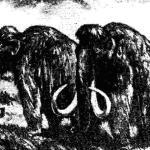 Мамонты, водившиеся в степях и тундре Европы, Северной Азии и Северной Америки в верхнем плейстоцене