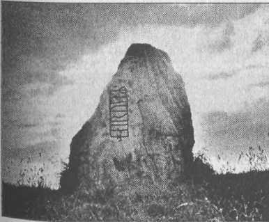 Рис. 100. Рунический камень из Эстер-Лёгум, Дания