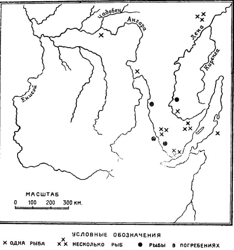 Рис. 2. Карта находок каменных рыб.
