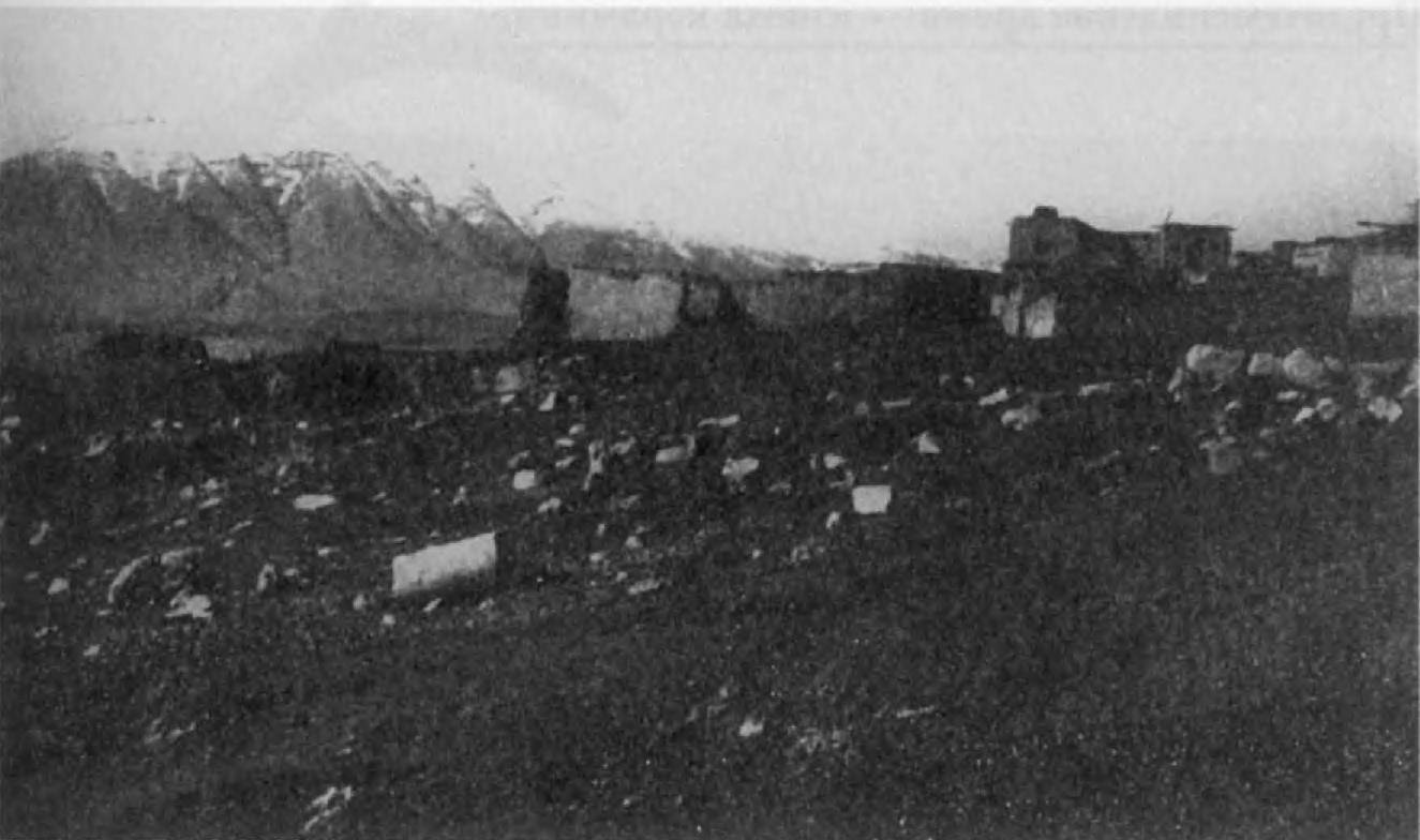 8. Остатки храма селевкидского периода в Кангаваре (Мидия).
