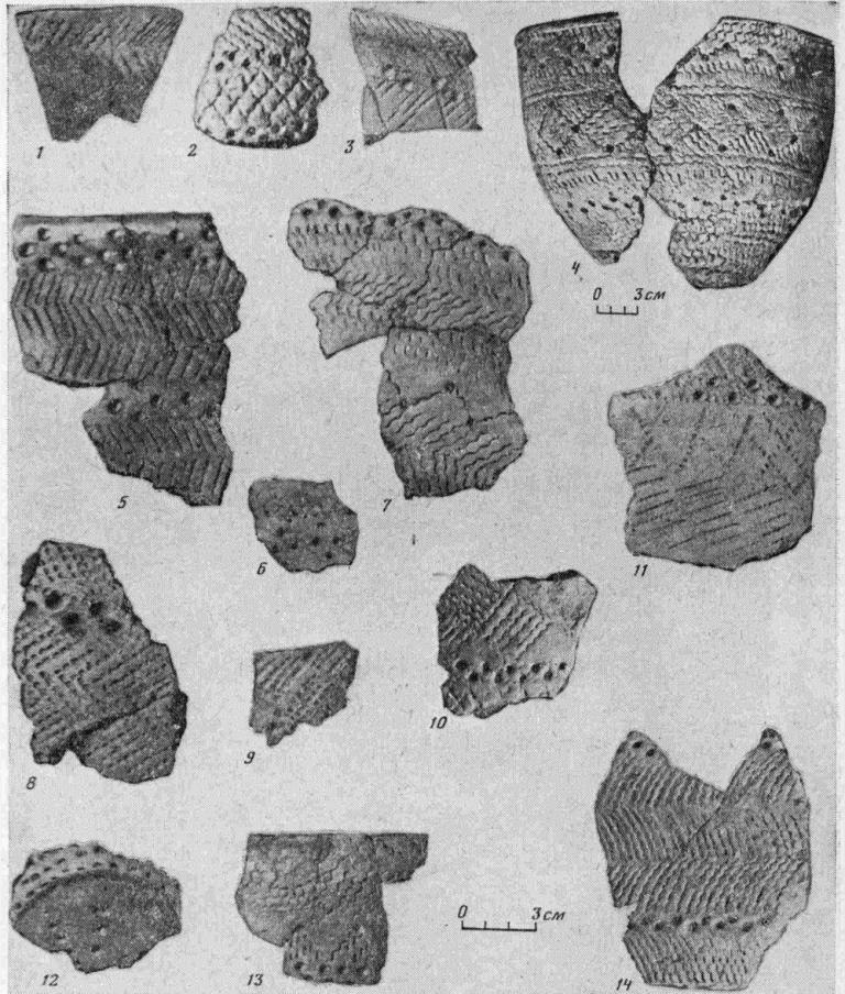 Рис. 3. Керамика хэяхинского типа. 1—3, 5—13 — Хэяхинская стоянка; 4 — горшок из Салехардского музея