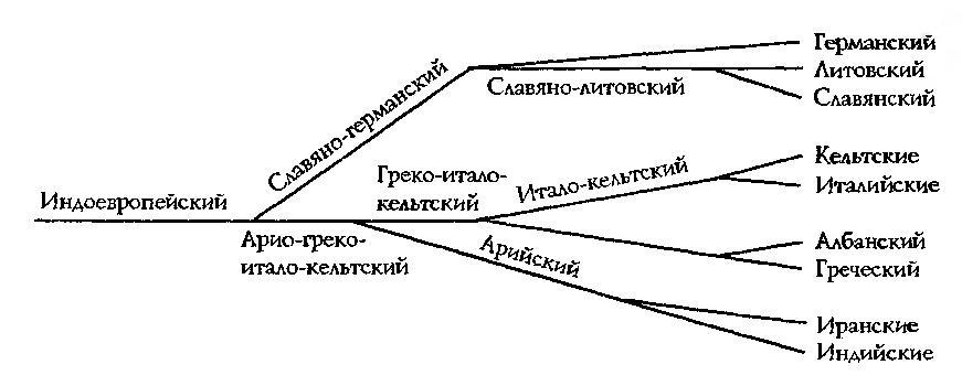 Рис. 2. Схема членения индоевропейского языка А. Шлейхера