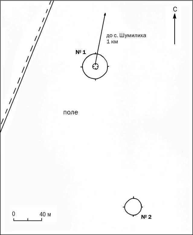 Рис. 1. Курганный могильник Шумилиха-1